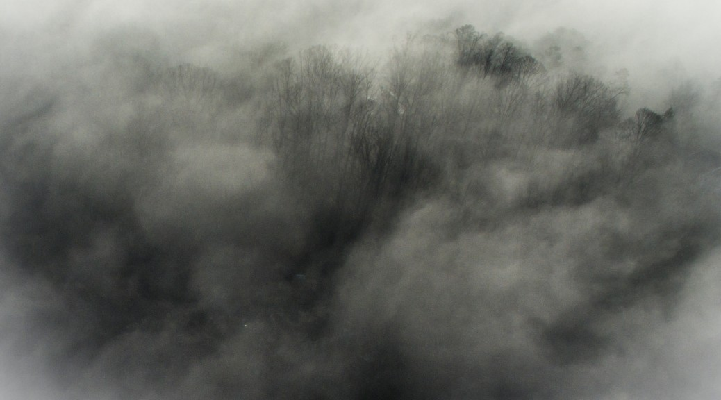 A Break in the Fog